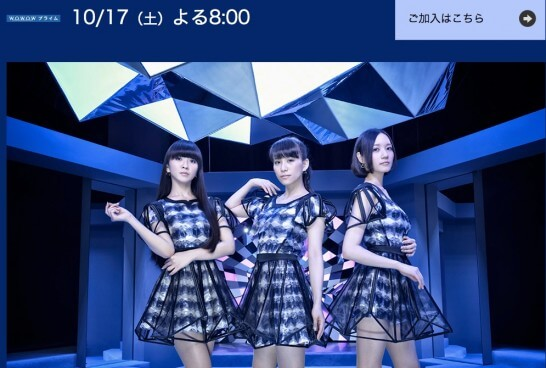 Perfume_Anniversary_10days_2015_PPPPPPPPPP「LIVE_3:5:6:9」 音楽 WOWOW